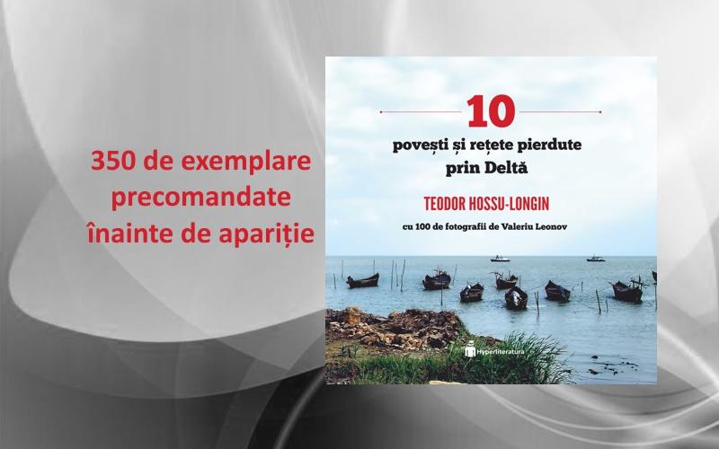 10 povesti si retete pierdute prin Delta, Teo Hossu Longin, Hyperliteratura
